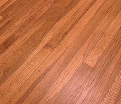 Advantages Of Hardwood Flooring Over Carpet Homeflooringpros