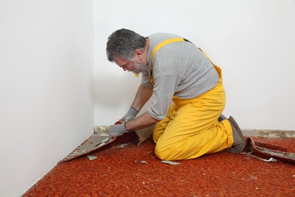 Carpet removal cost