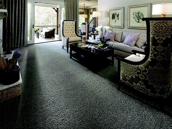 Cut Pile Carpet Vs Textured Carpet Buyers Guide To Carpet