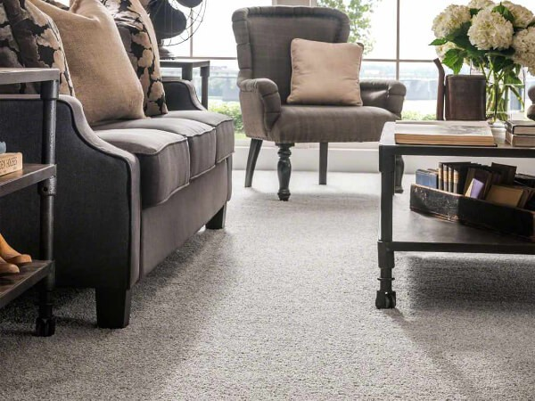 Cut Pile Carpet Vs Textured Carpet Buyers Guide To Carpet