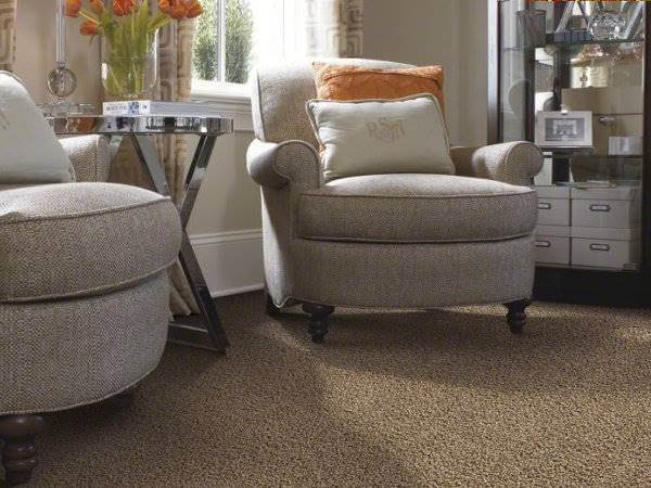 frieze carpet: what is it, the benefits & the best frieze carpet Best Carpet for Living Room