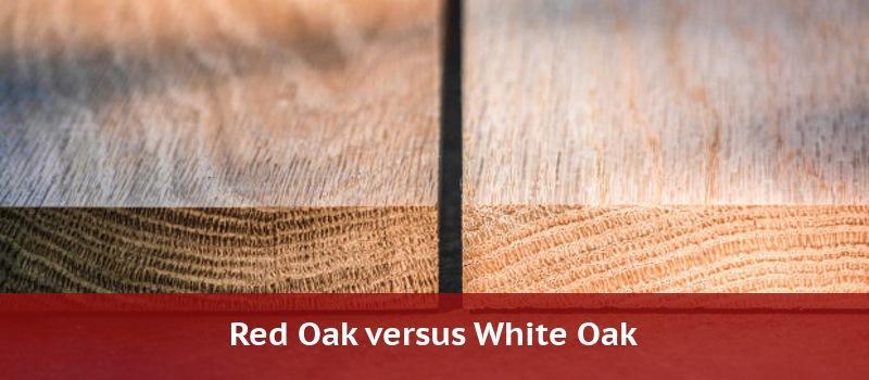 Red Oak Vs White 2020 Home