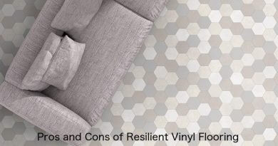 Pros & Cons of Resilient Vinyl Flooring (Luxury Vinyl Plank & Sheet Vinyl)