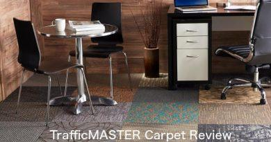 TrafficMaster Carpet: Reviews, Pros & Cons and Prices