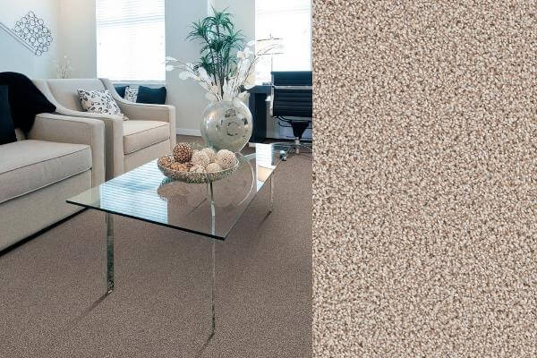 Trafficmaster Carpet Reviews Pros Amp Cons Prices And
