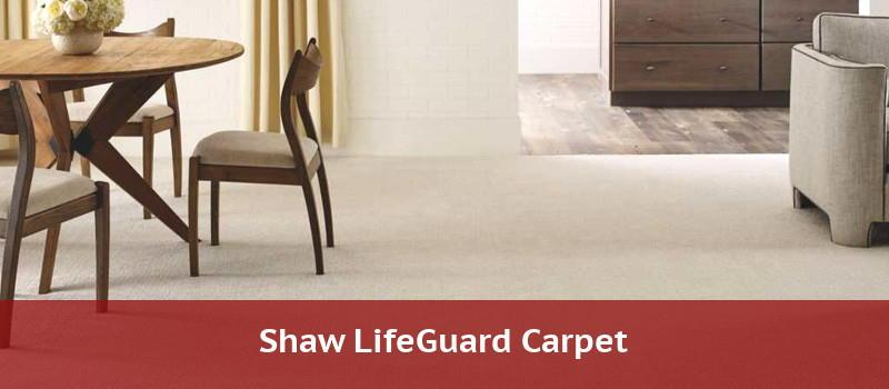 shaw lifeguard carpet
